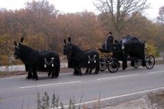 Koets-met-4-Friese-paarden