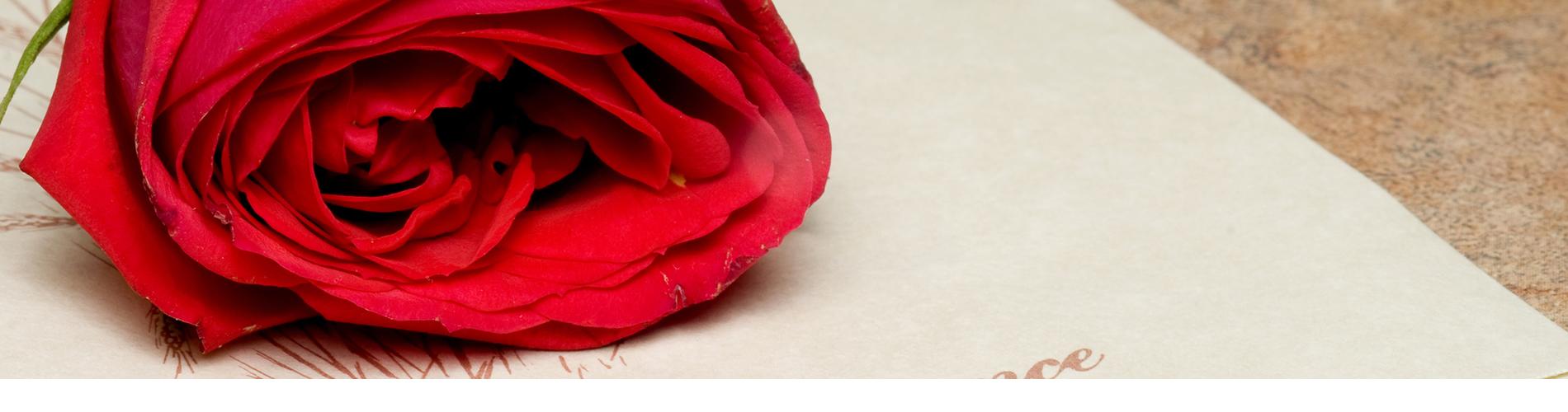 Bij Uitvaartverzorging Donker drukken wij uw rouwkaarten in onze eigen drukkerij. Snel en flexibel. Standaard of met eigen foto/ontwerp. Ook in het weekend.