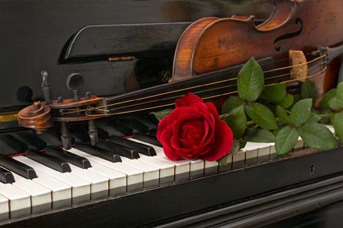Muziek bij de uitvaart raakt en brengt degenen die achterblijven bij elkaar. U kunt kiezen voor muziek van CD maar ook voor live muziek van een zangeres.